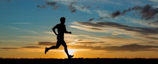 Biegniemy we wrocławskim półmaratonie!